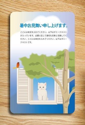 PVC card PVC卡